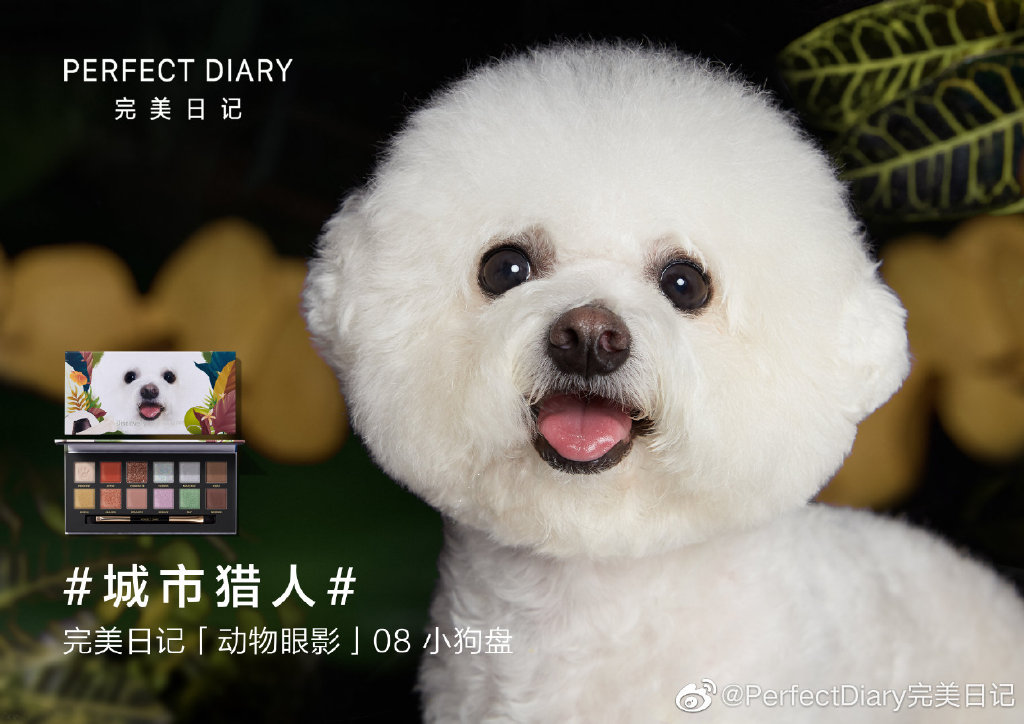 Dog eyeshadow. Credit: Perfect Diary