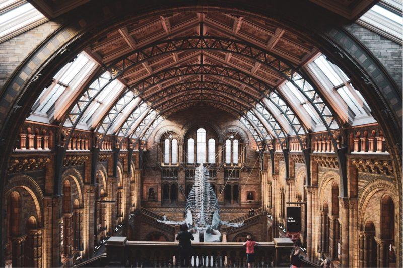 British Natural History Museum. Credit: Axiell