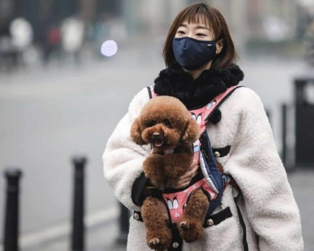 Chinese woman with dog