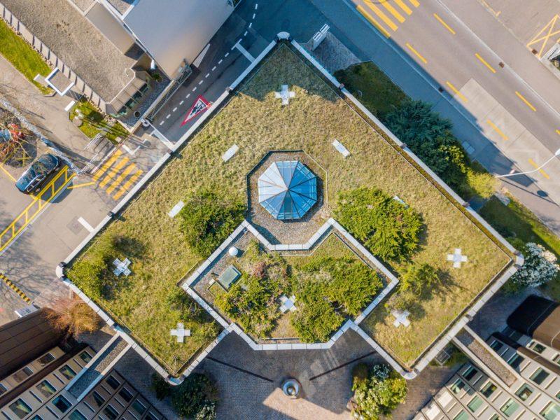 Rooftop gardens. CreditL Adobe Stock