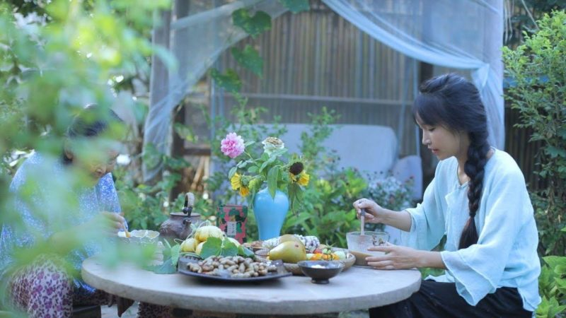 Chinese vlogger Li Ziqi. Credit: APK Pure